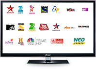 DEN cable India